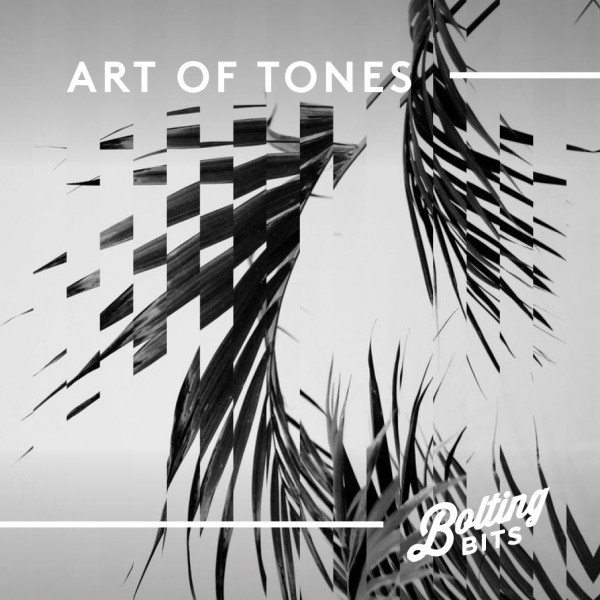 MIXED BY/ Art Of Tones